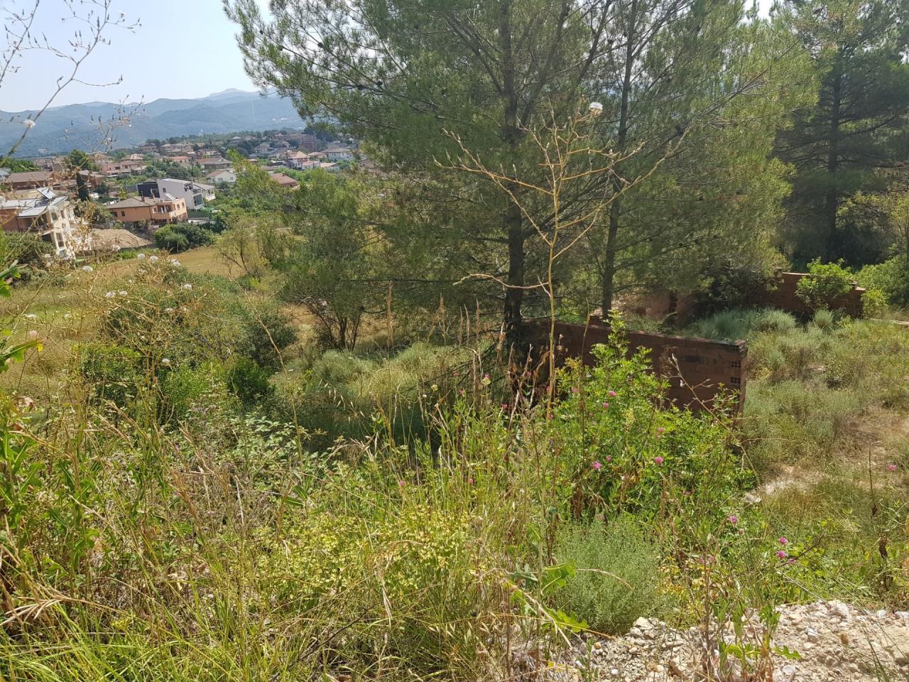 Terreno en CA L´ENRICH DE CALAFELL (Castellgalí)