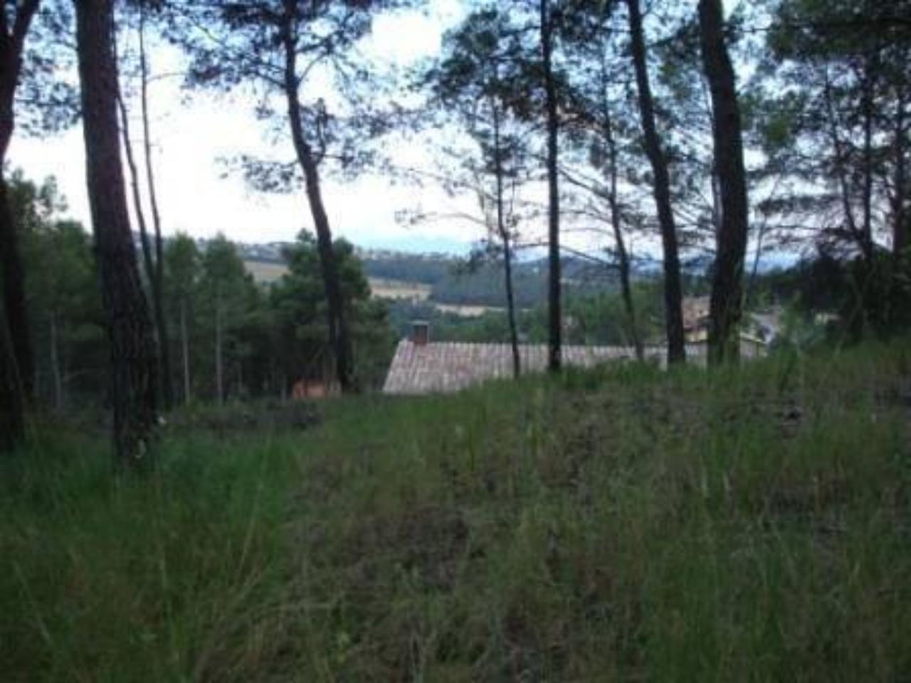 Terreno en Castellnou de Bages
