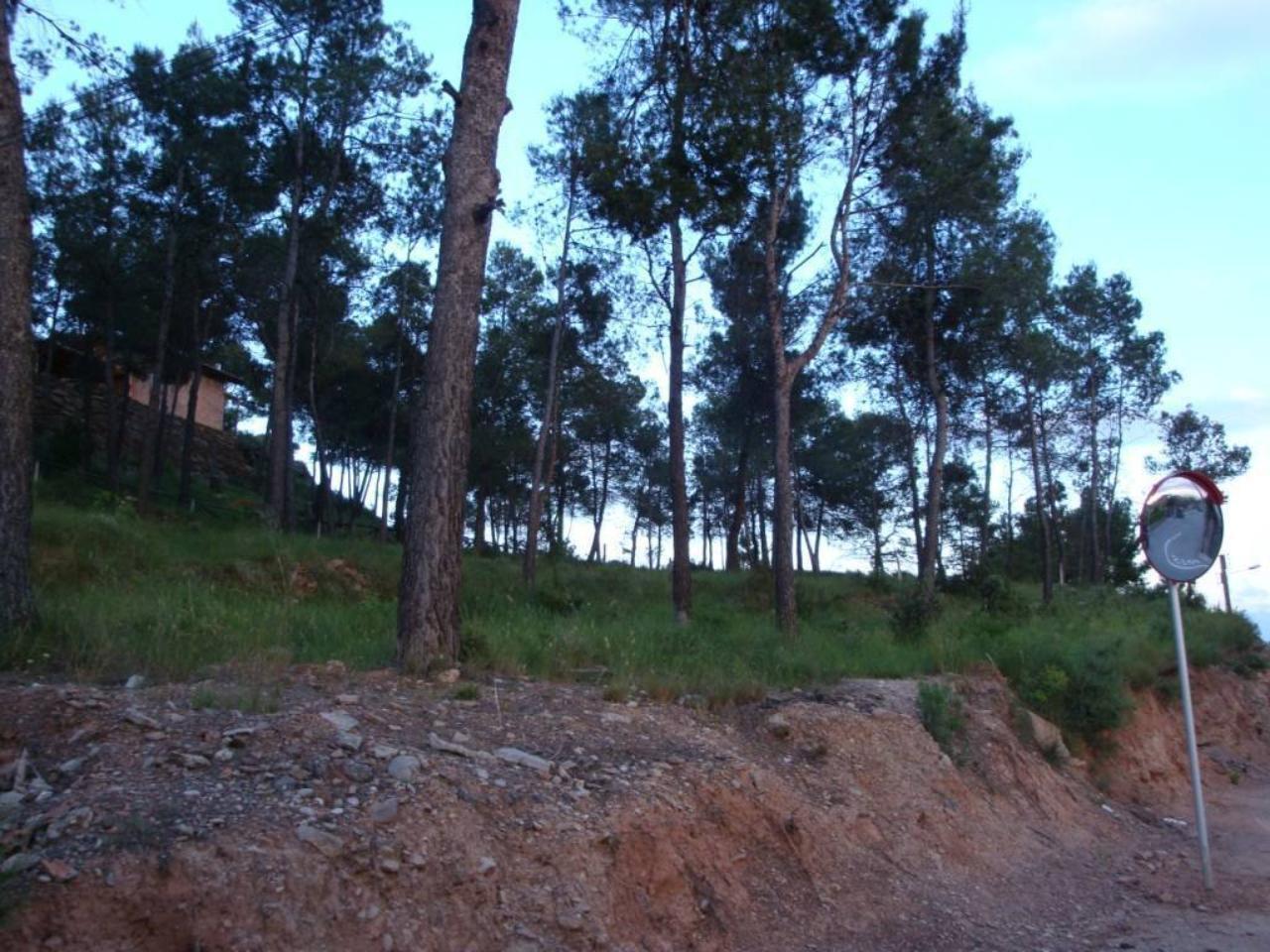 Terreno en ZONA EL SERRAT