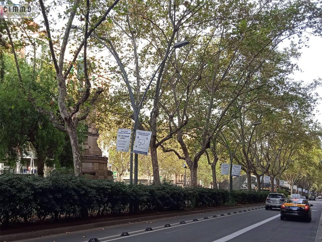 Local a lloguer El Camp d´en Grassot-Gràcia Nova (Barcelona Capital)