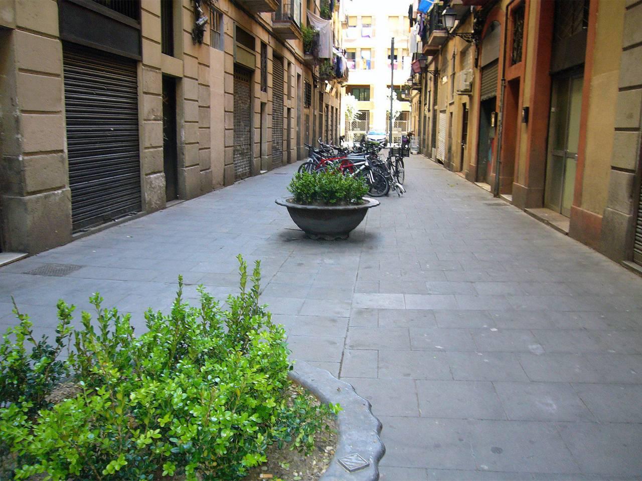 Piso en alquiler El Raval (Barcelona Capital)