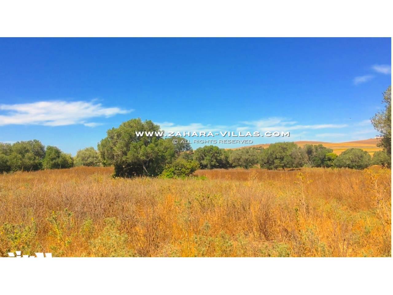 Imagen 18 de Country state for sale in Vejer de la Frontera