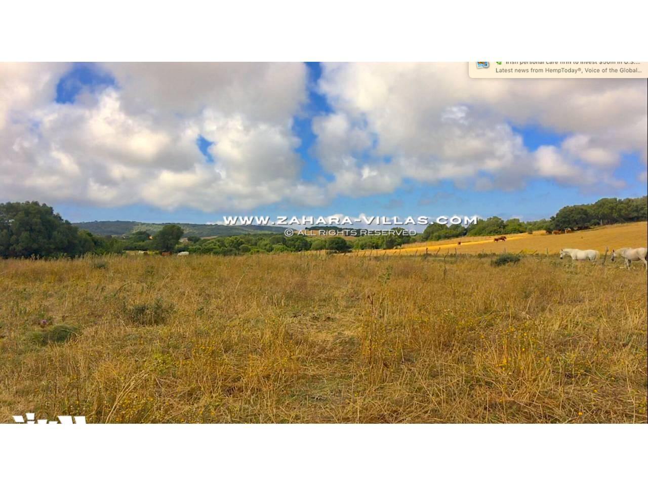 Imagen 20 de Country state for sale in Vejer de la Frontera
