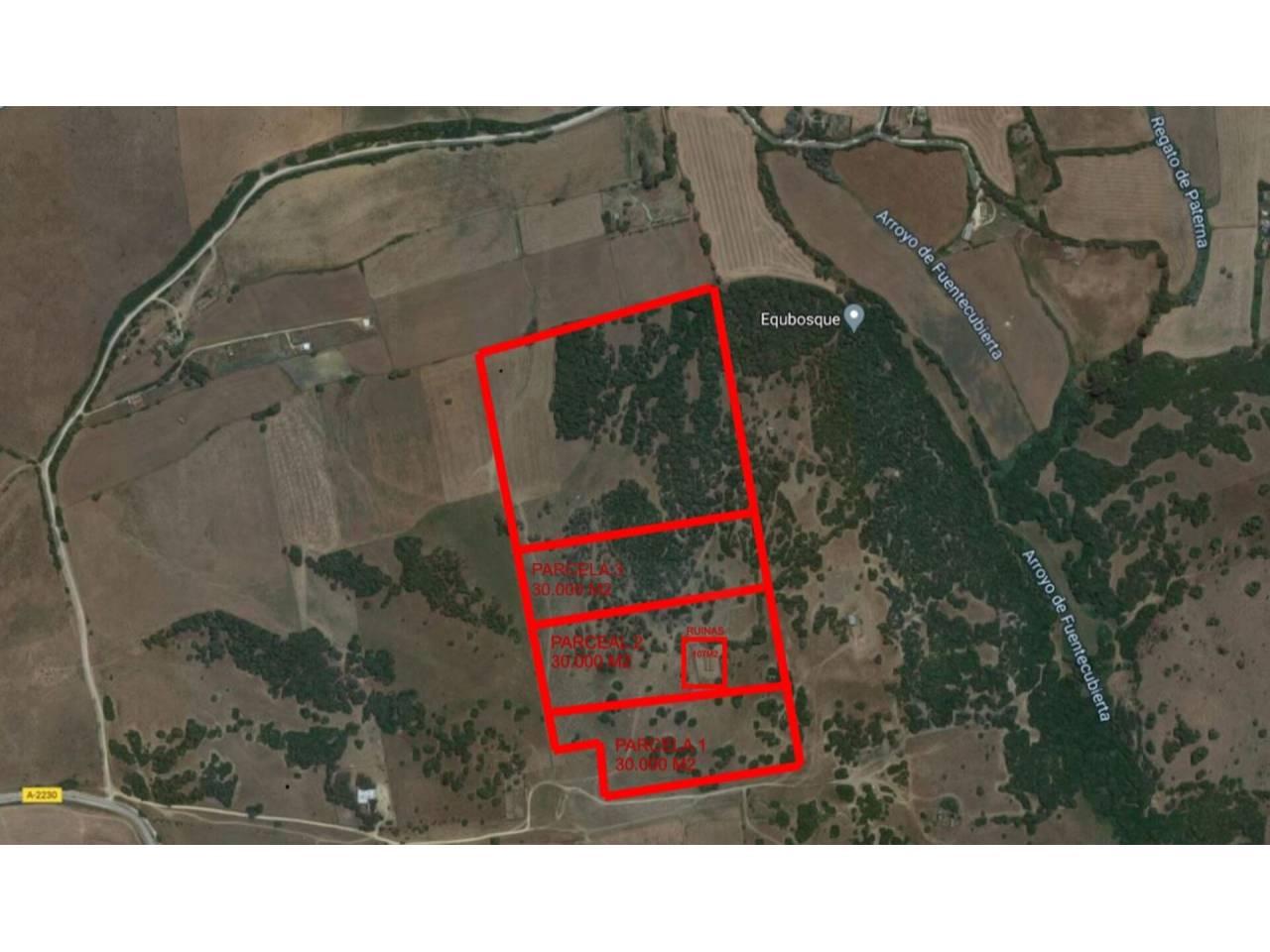 Imagen 21 de Country state for sale in Vejer de la Frontera