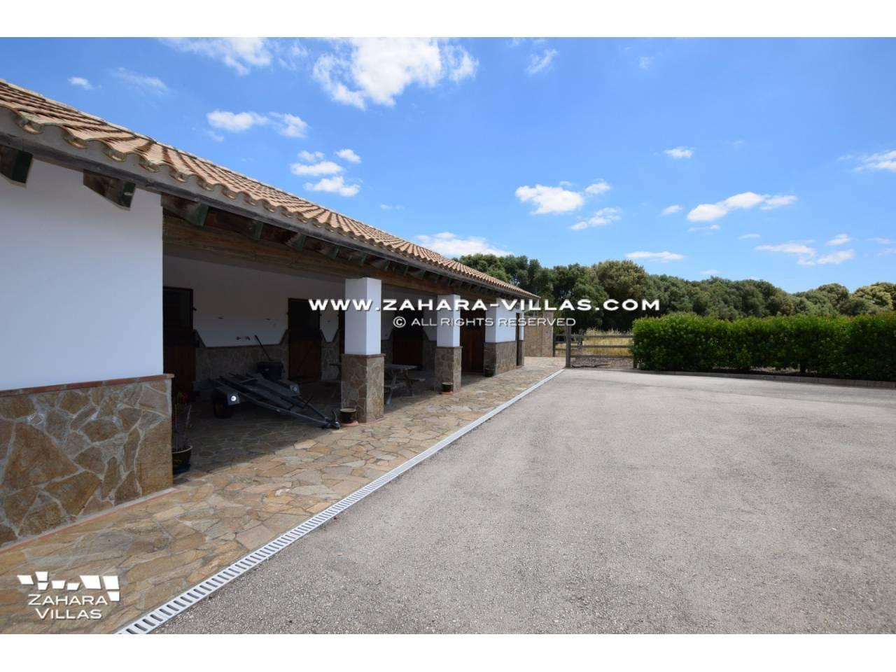 Imagen 30 de Magnificent Finca for horses in Los Parralejos - La Muela de Vejer
