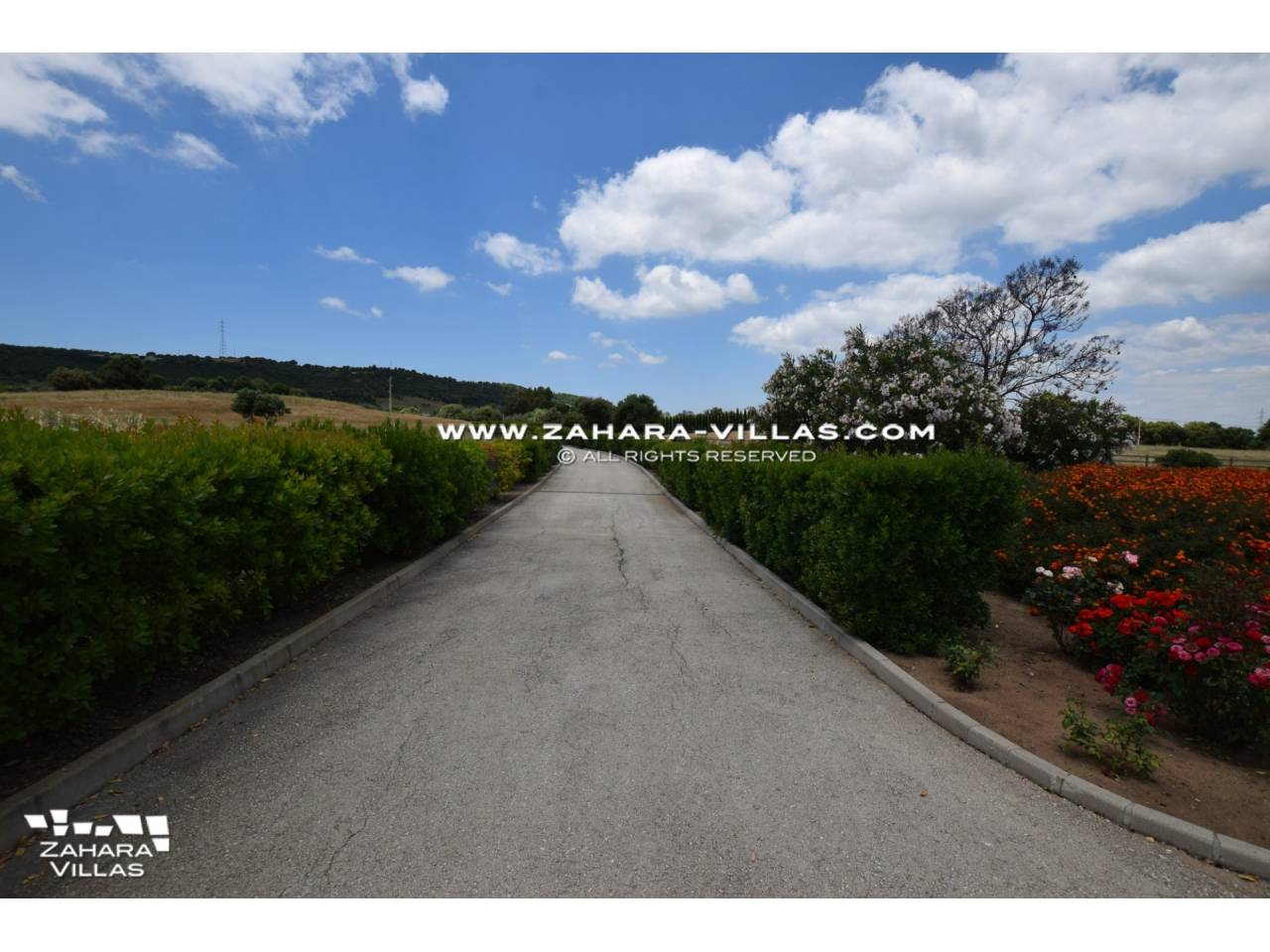 Imagen 38 de Magnificent Finca for horses in Los Parralejos - La Muela de Vejer