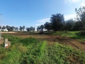 Terreno en venta en Vilobí d´Onyar de nueva construcción - 5936